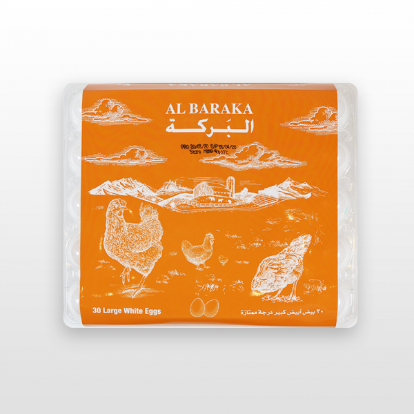 AL BARAKA BROWN EGGS LARGE 6pcs